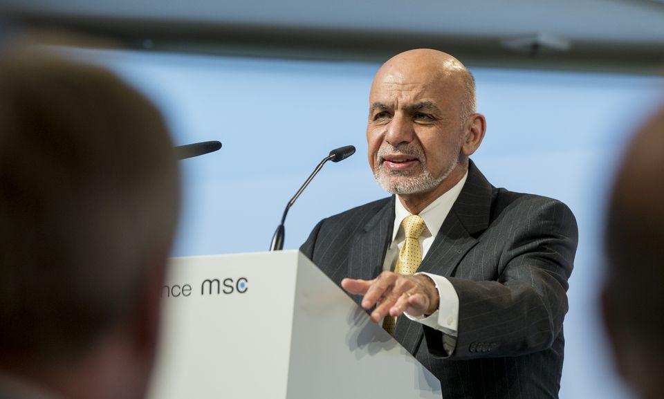 MSC_Ghani.jpg